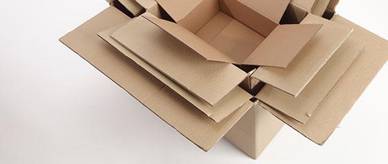 boxsizes-big